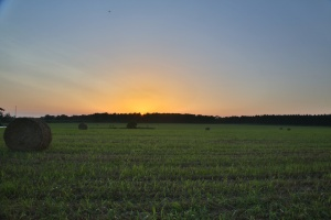 Sunset_Hay_Field